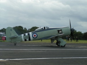 Hawker Sea Fury FB.11 at Biggin Hill.