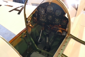 Close up view of the Mew Gull cockpit.