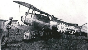 The aircraft which the new Albatros will represent, pictured here during the war.
