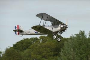 Tomtit gets airborne.