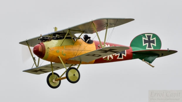 An Albatros D.V, a later version of the aircraft shook claimed the first Camel victory in. - Errol Cavit.