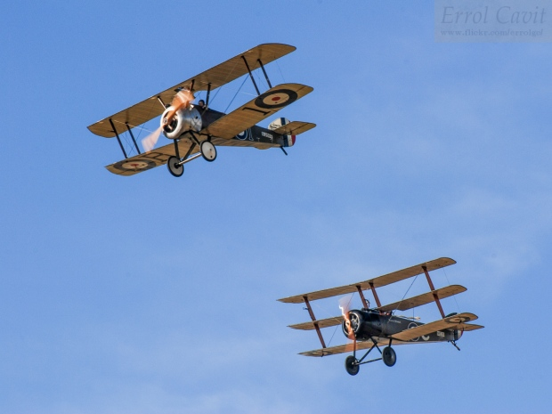 The Camel was the first completely new design from Sopwith since the Tabloid. Here the New Zealand based replica is seen flying with a Sopwith Triplane replica, the type which the Camel replaced. - Photo Courtesy of Errol Cavit