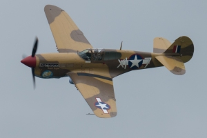 The Fighter Collection's P-40F
