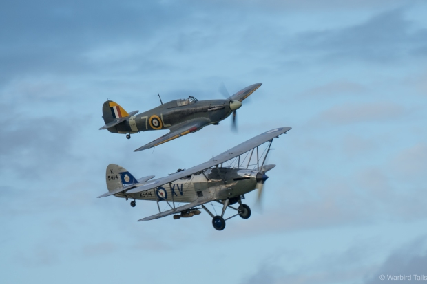 The Hawker pair is always a pleasure, but in this light it was superb!