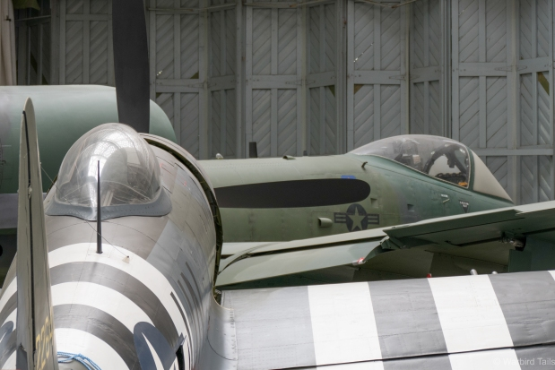 The pair of Thunderbolts, A10 and P-47 share the far corner of Hangar 5.