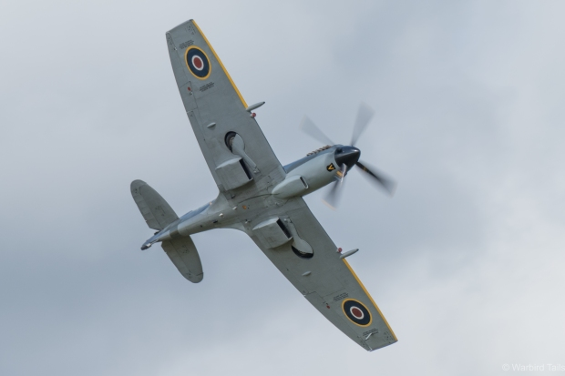 TE311 displaying at Bicester in June.