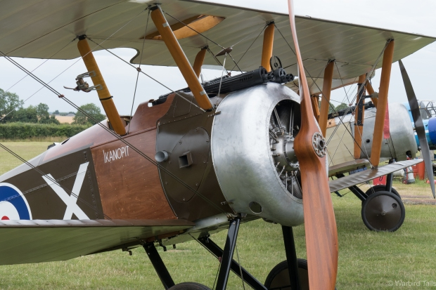 It was great to see the Collection's Sopwith Camel replica out alongside its stablemate, the Pup.