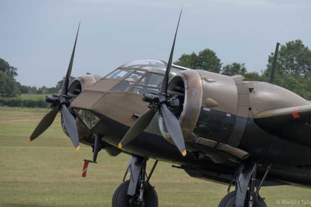 The Blenheim looked stunning sitting out on the grass during the afternoon.
