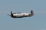 Steve Hinton flying the P-36C