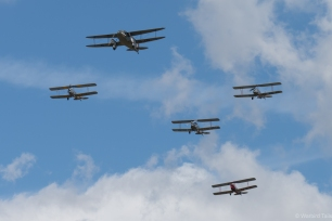 The de Havilland tribute formation.