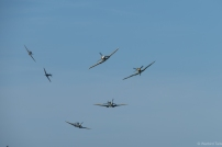 The tailchase will go down as one of the most memorable sights at Headcorn I'm sure.