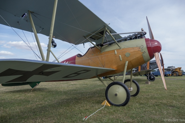The Albatros was the other star guest in the display.