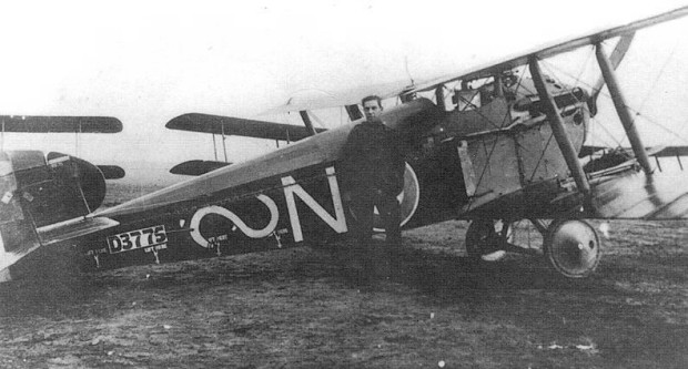 An 87 Squadron Dolphin.