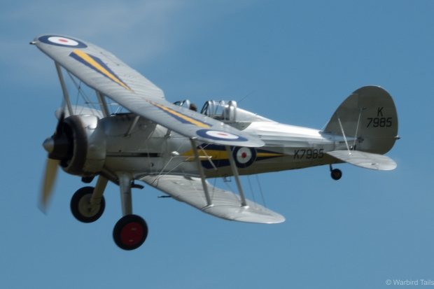 Another shot of the Gladiator during its display.