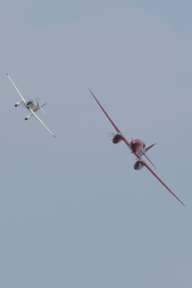 Old Warden's Classic pair of racing machines, the DH88 Comet and Percival Mew Gull.