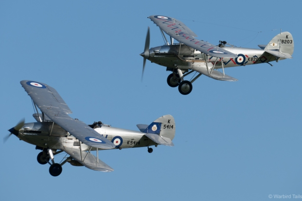 The ever-beautiful Hawker Bi-plane pair of the Demon and the Hind.