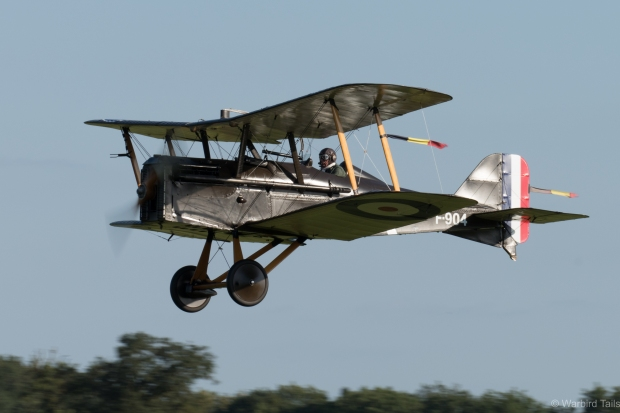 The Collection's SE5a looking great in the afternoon sun.